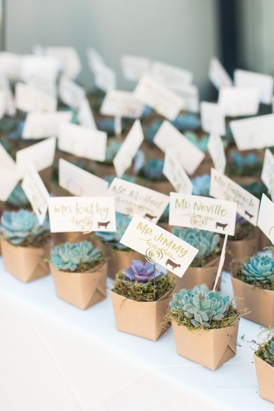Unique Wedding Favours Ideas That Will Wow Your Guests Wedding Favor Gift Tags Wedding Gift Favors Frugal Wedding
