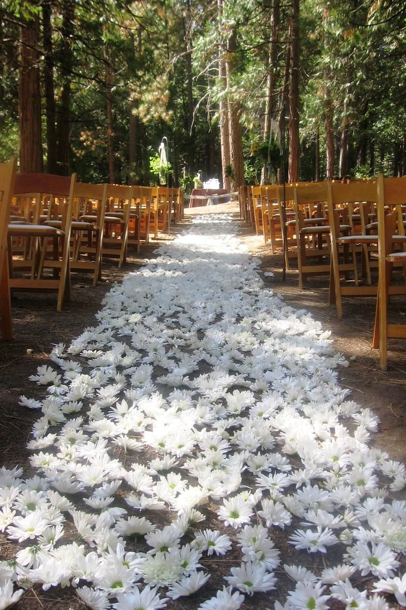 Evergreen Lodge Weddings Get Prices For Yosemite Wedding Venues